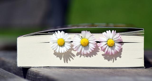 ciekawe książki